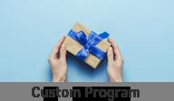 Custom Program