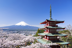 Information nearby Fujiyama JLS